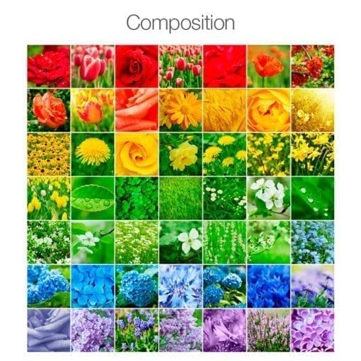 Color Nature Revestimento de Azulejos - Composição