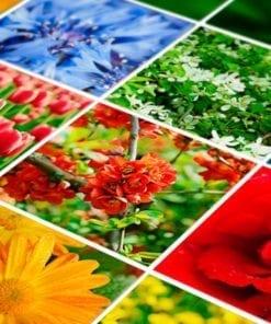 Color Nature Revestimento de Azulejos - Detalhe