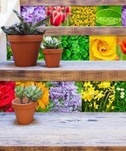 Color Nature Revestimento de Azulejos - Escadas