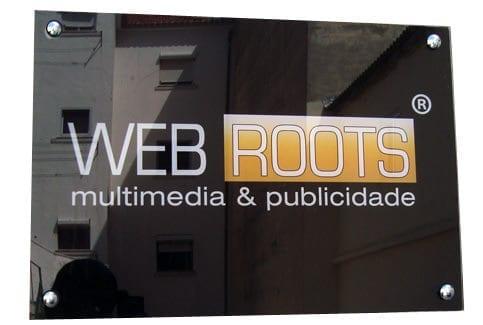 placa_web2