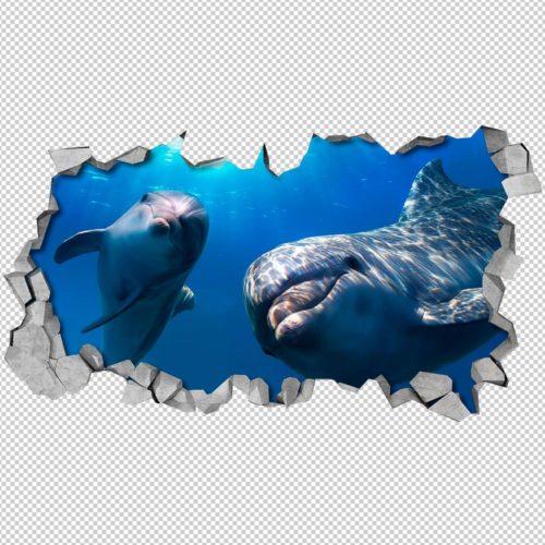 Olá Golfinhos Efeito Parede Partida Detalhes
