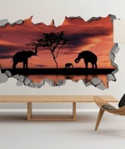 Pôr do Sol Africano Efeito 3D