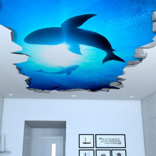 Tubarões Efeito 3D para Teto